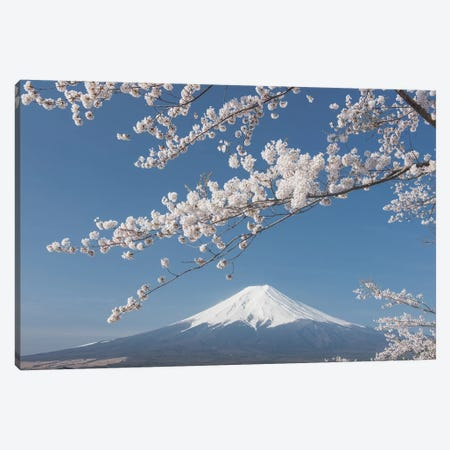 Spring In Japan XXVII Canvas Print #KRD86} by Daniel Kordan Canvas Print
