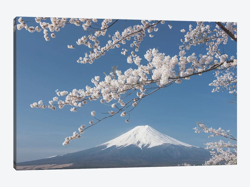 Spring In Japan XXVII by Daniel Kordan 1-piece Canvas Print