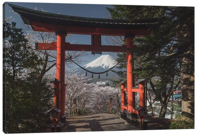 Spring In Japan XXVIII Canvas Art Print