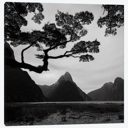 Spring In New Zealand I Canvas Print #KRD88} by Daniel Kordan Canvas Art