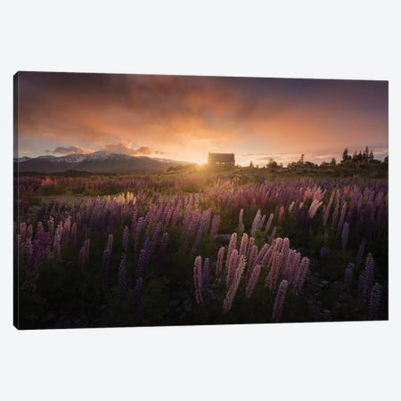 Spring In New Zealand II Canvas Print #KRD89} by Daniel Kordan Canvas Art