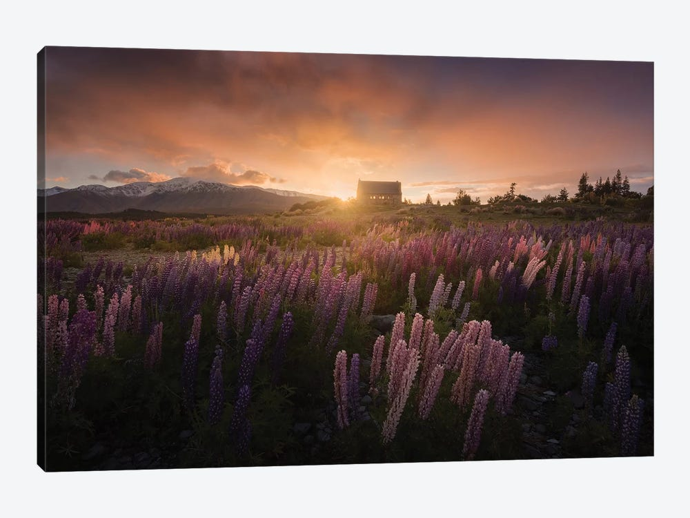 Spring In New Zealand II by Daniel Kordan 1-piece Canvas Wall Art