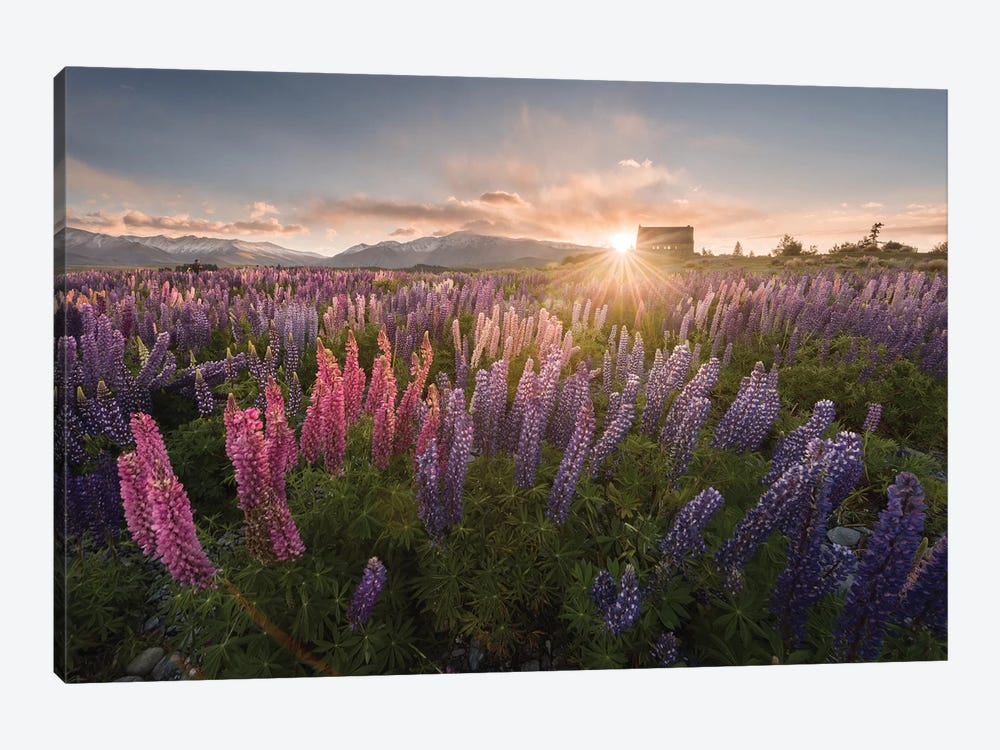 Spring In New Zealand III by Daniel Kordan 1-piece Canvas Artwork