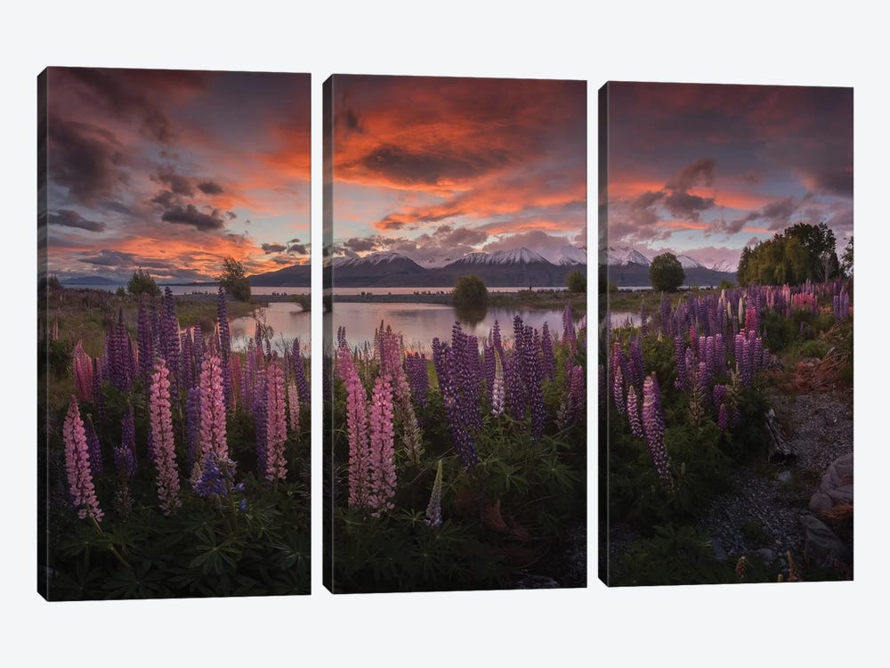 Spring In New Zealand V by Daniel Kordan 3-piece Canvas Wall Art