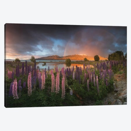 Spring In New Zealand VI Canvas Print #KRD93} by Daniel Kordan Canvas Print