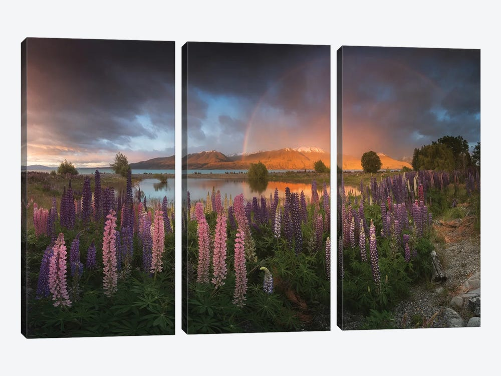 Spring In New Zealand VI 3-piece Canvas Art Print