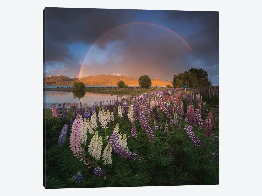 Spring In New Zealand VII by Daniel Kordan 1-piece Canvas Art