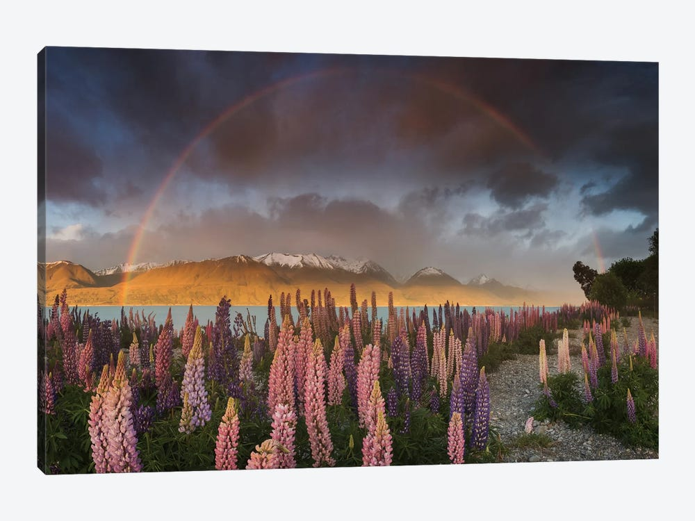 Spring In New Zealand IX by Daniel Kordan 1-piece Canvas Artwork