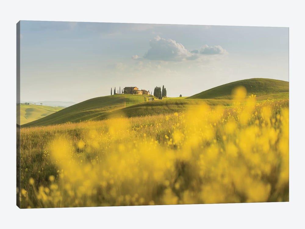 Spring In Tuscany II by Daniel Kordan 1-piece Canvas Artwork