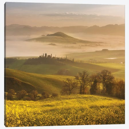 Spring In Tuscany III Canvas Print #KRD99} by Daniel Kordan Canvas Art Print