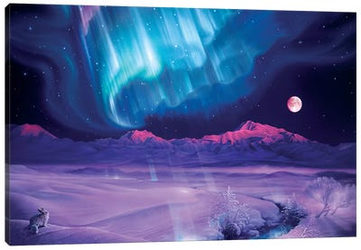 Snowfield Illumination Canvas Art Print