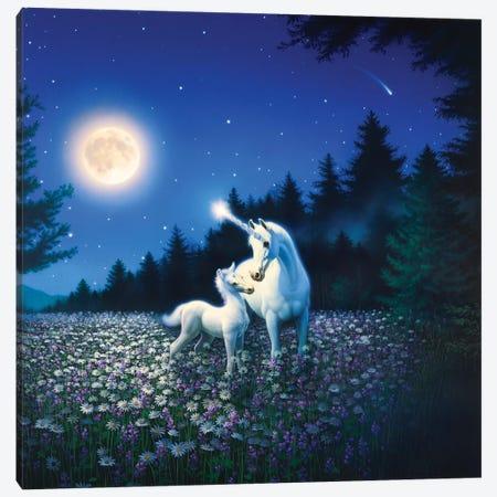 Spring Beauty Canvas Print #KRE104} by Kirk Reinert Canvas Wall Art