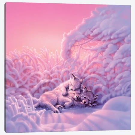 Sweet Dreams Canvas Print #KRE107} by Kirk Reinert Canvas Art
