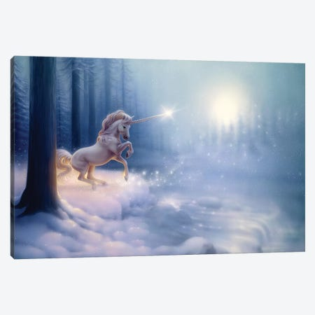 The Crystal Forest Canvas Print #KRE111} by Kirk Reinert Canvas Wall Art