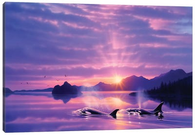 Tranquility Bay Canvas Art Print