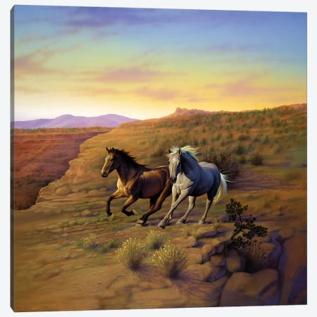 Western Skies Canvas Print #KRE125} by Kirk Reinert Canvas Artwork