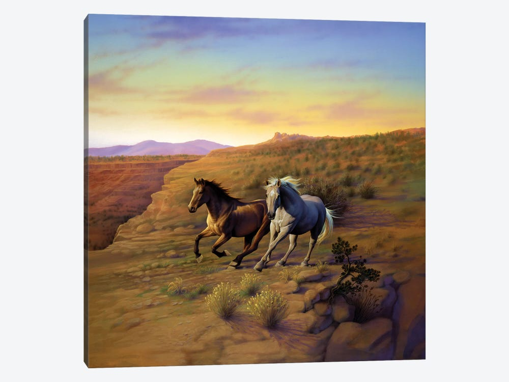 Western Skies by Kirk Reinert 1-piece Canvas Print