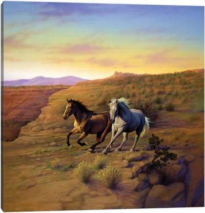 Western Skies Canvas Art Print
