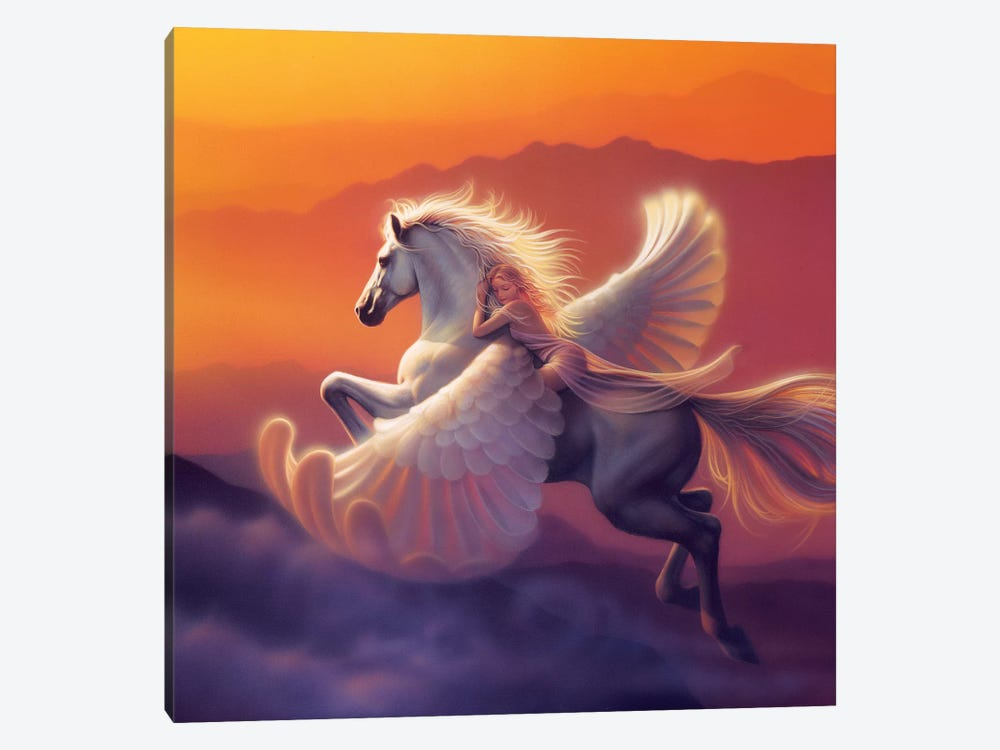 Wings Of A Dream 1-piece Canvas Wall Art