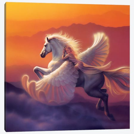Wings Of A Dream 3-Piece Canvas #KRE126} by Kirk Reinert Canvas Artwork
