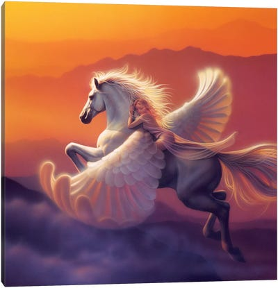 Wings Of A Dream Canvas Art Print