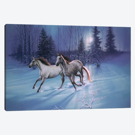 Winter Evening Canvas Print #KRE127} by Kirk Reinert Canvas Art