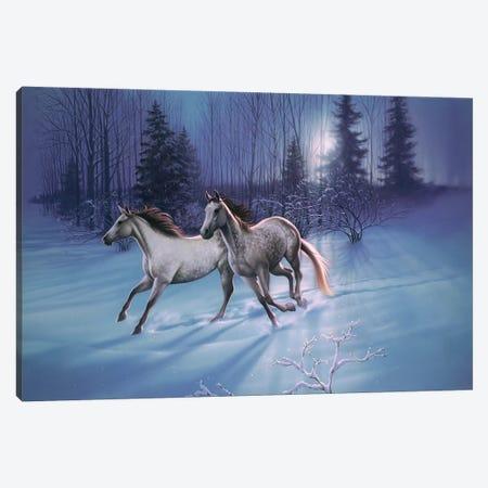 Winter Evening Canvas Print #KRE127} by Kirk Reinert Canvas Art
