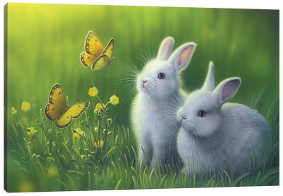 Buttercups Canvas Art Print