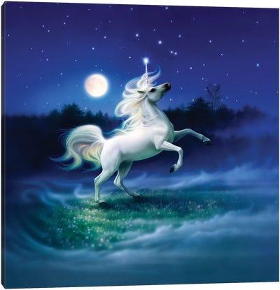 Enchanted Evening II Canvas Art Print