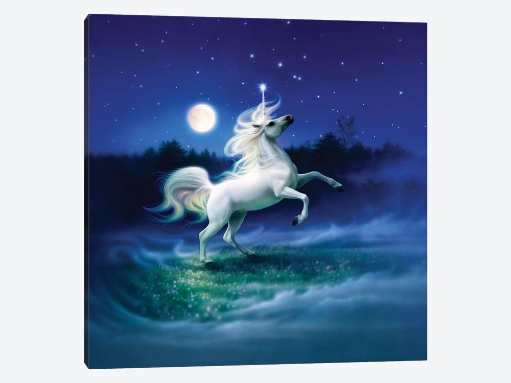 Enchanted Evening II by Kirk Reinert 1-piece Canvas Print