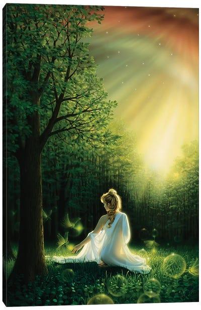 Fairy Friends Canvas Art Print