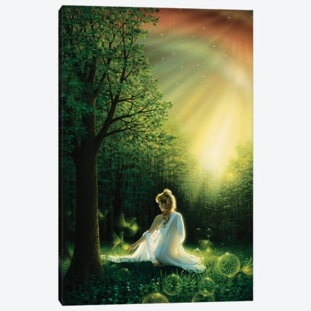Fairy Friends Canvas Print #KRE38} by Kirk Reinert Canvas Wall Art