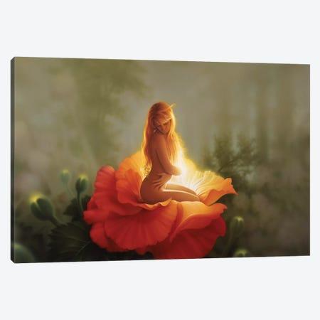 First Light Canvas Print #KRE42} by Kirk Reinert Art Print
