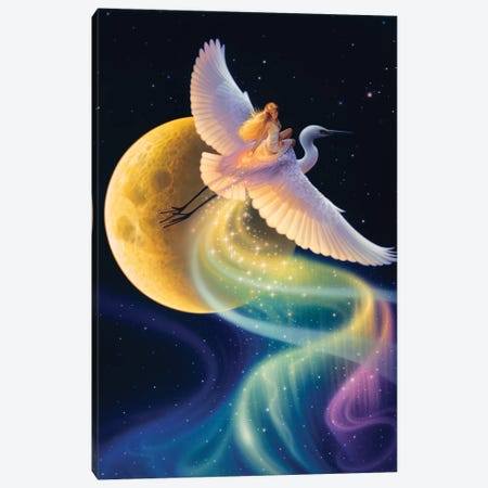 Flight Of The Aurora Canvas Print #KRE43} by Kirk Reinert Canvas Art Print