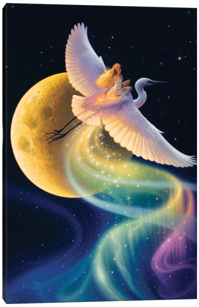 Flight Of The Aurora Canvas Art Print