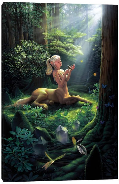 Forest Princess Canvas Art Print