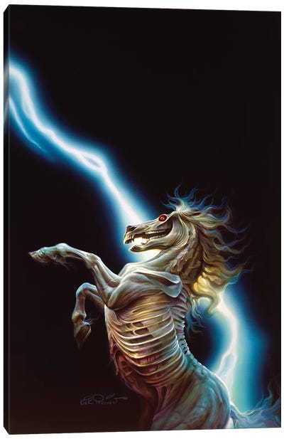 Ghost Rider Canvas Art Print