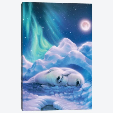Harmony Baby Seals Canvas Print #KRE54} by Kirk Reinert Canvas Art Print