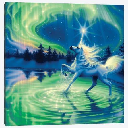 Majestic Night Canvas Print #KRE69} by Kirk Reinert Art Print