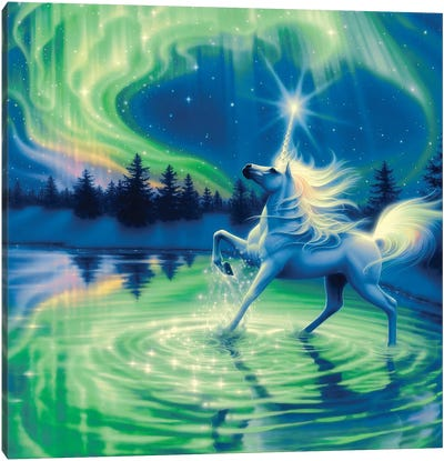 Majestic Night Canvas Art Print