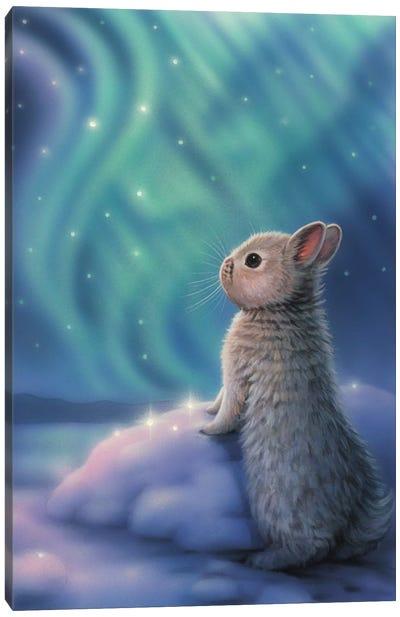 Aurora Bunny Canvas Art Print