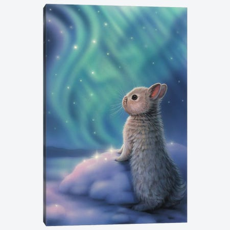 Aurora Bunny Canvas Print #KRE6} by Kirk Reinert Canvas Art
