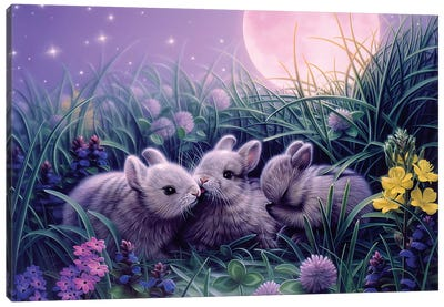 Moon Babies Canvas Art Print