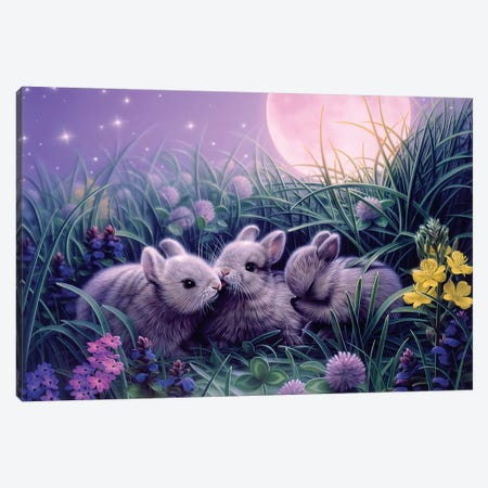 Moon Babies Canvas Print #KRE72} by Kirk Reinert Canvas Artwork