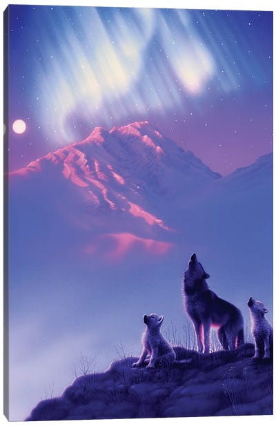 Moon Song Canvas Art Print