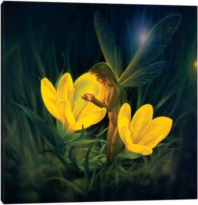 Night Harvest Canvas Art Print