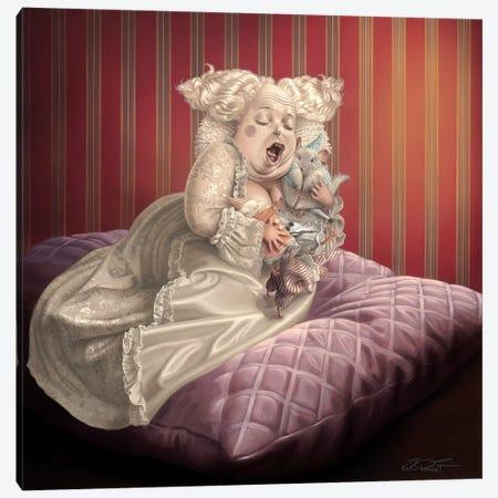 Satin And Chinchilla Canvas Print #KRE91} by Kirk Reinert Canvas Artwork