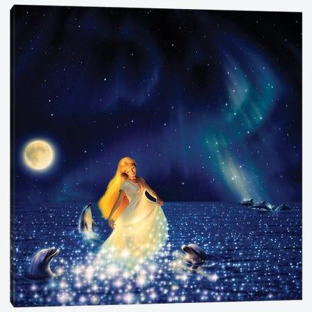 Sea Of Stars Canvas Print #KRE93} by Kirk Reinert Canvas Wall Art