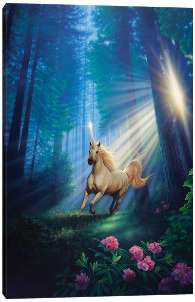 Secret Forest Canvas Art Print