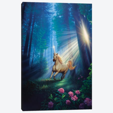 Secret Forest Canvas Print #KRE94} by Kirk Reinert Canvas Print